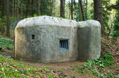 Old concrete bunker in forest — Stock Photo