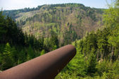Pipe in the green forest — Stock Photo