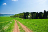 Summer landscape with road — Stock Photo