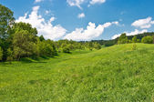 Green meadow in the hills — Stock Photo