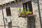 Old window with flowerbox — Stock Photo