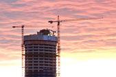 Gratte-ciel et grues pendant le coucher du soleil — Photo