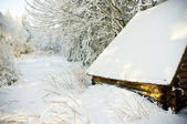 Cottage in forest during the winter — Stock Photo