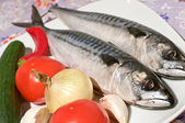 Two raw mackerels and vegetables — Stock Photo