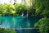 Beautiful lake in forest, Plitvice, Croatia — Stock Photo