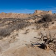 Landscape of Bardenas reales - Stock Photo