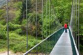 Most przez rzekę Sellę, asturias, Hiszpania — Zdjęcie stockowe
