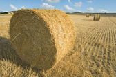 Bales near Angouleme, France — Foto Stock