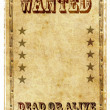 Vintage wanted poster — Stock Photo #7923265
