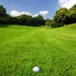 Golf course — Stock Photo #7923699