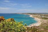 PANORAMIC VIEW ON THE SEA, TARROS, SARDINIA, ITALY — Stock Photo