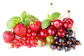 Still life of berry — Stock Photo