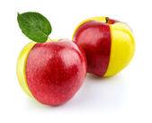 緑の葉と赤と黄色のリンゴの果実 — ストック写真