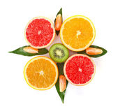 Fruity compass — Stock Photo