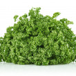 Fresh frizzy parsley — Stock Photo