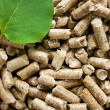 Pile of wood pellets with a green leaf — Stock Photo
