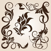 Brown floral design element collection