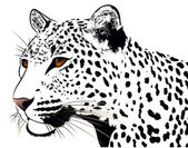Abstract image of a leopard executed in the form of a tattoo