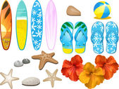 Set of design elements with flip flops surfboards hibiscus flowers beach ball and other beach related objects