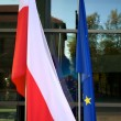 thumbnail of Europe and Polish Flags