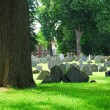 thumbnail of Old cemetery
