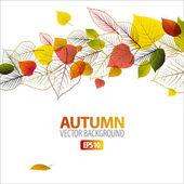 Podzimní vektorové pozadí abstraktní květinové
