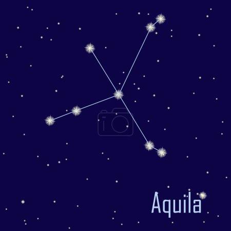 Постер, плакат: The constellation Aquila star in the night sky Vector illustr, холст на подрамнике