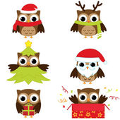 Christmas and New Year's owls in funny costumes - vector set