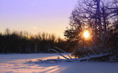 Winter Sun Set
