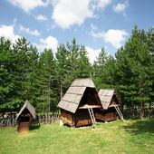 Srbské etnicko vesnice
