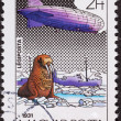 Постер, плакат: Hungarian Magyar Graf Zeppelin Air Mail Postage Stamp North Pole