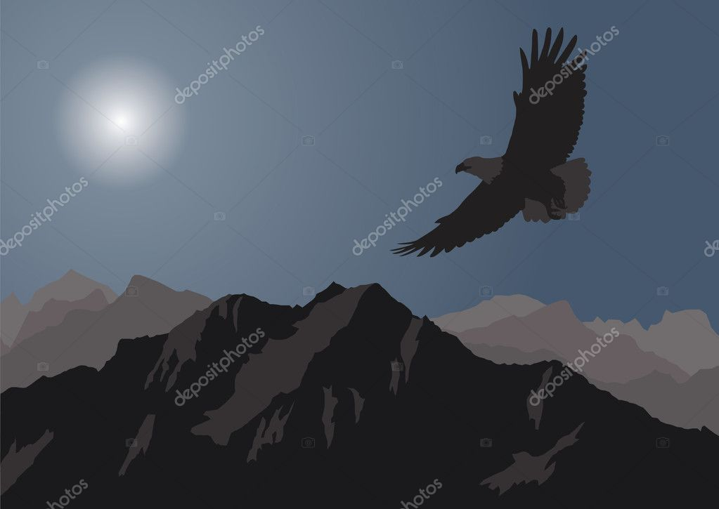 Eagle flying over the mountains