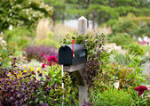 nás poštovní schránka s příznakem v květy