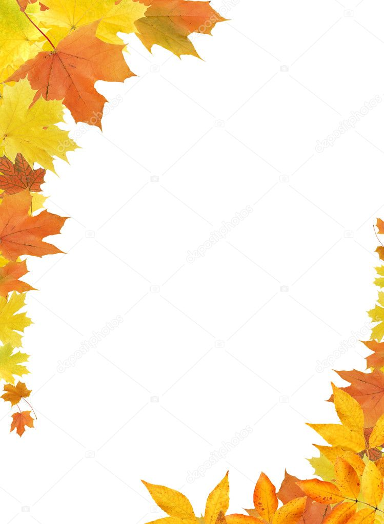 Fall Leaves Border