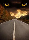 Fotografie horor v noci