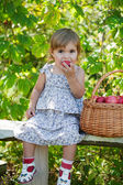 Malá holka sedí na lavičce s košem jablek