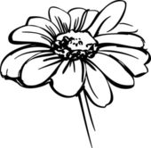 skiss vilda blomma som liknar en tusensköna