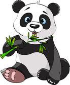 Fotografia Panda mangiando bambù