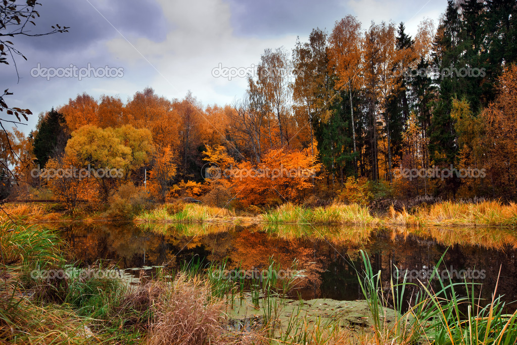 Фотообои Autumn Lake