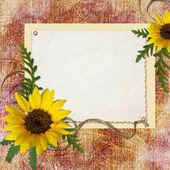 Fotografie Framework for invitation or congratulation.