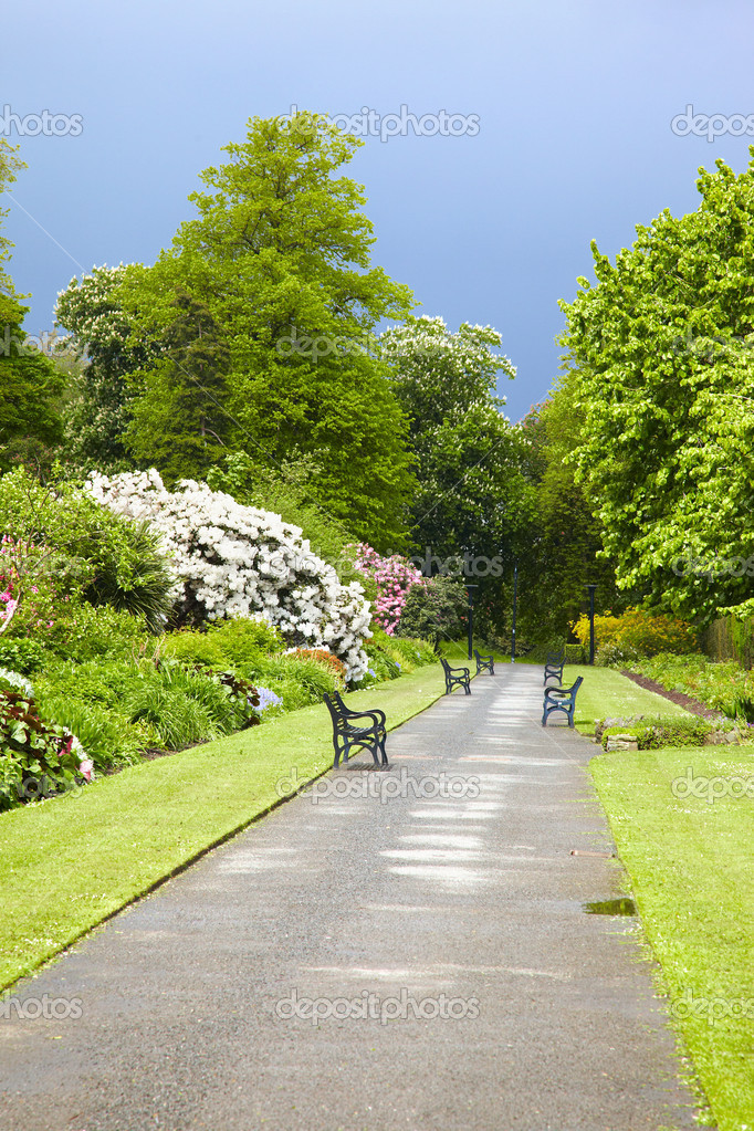 Jardin Botanico De Belfast Foto De Stock C Zastavkin 6746160