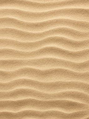 "Картина, постер, плакат, фотообои ""пляжный песок "", артикул 7543159"