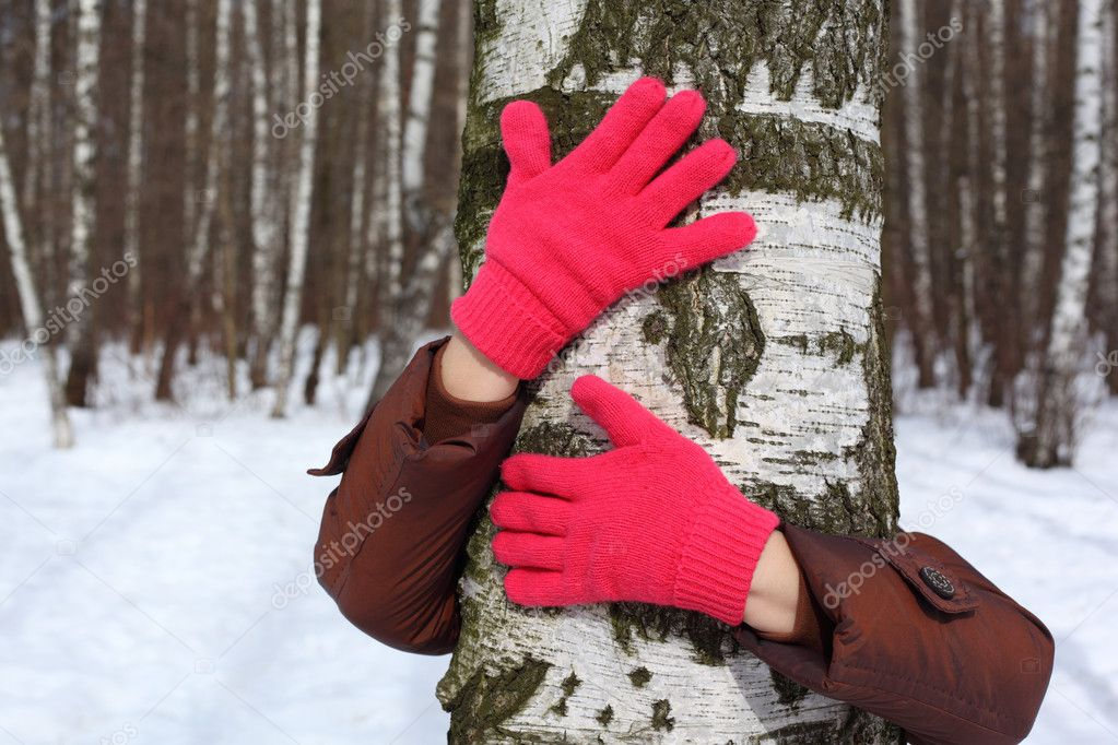 Hands in red gloves embrace birch