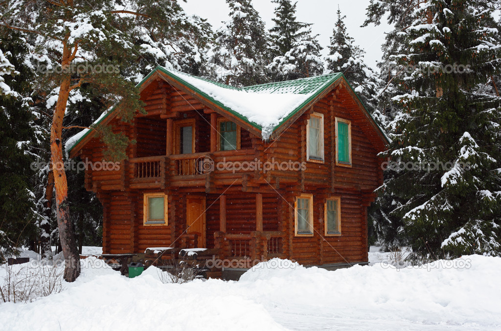 Wooden house in winter wood