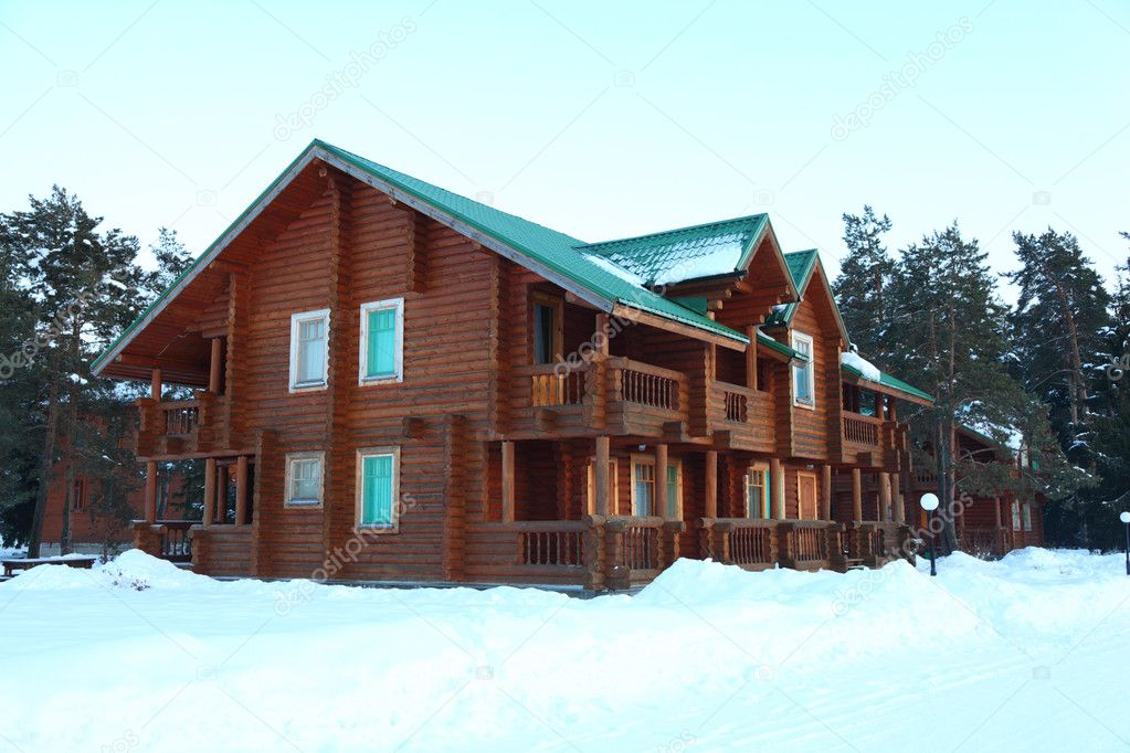 Wooden houses in winter forest