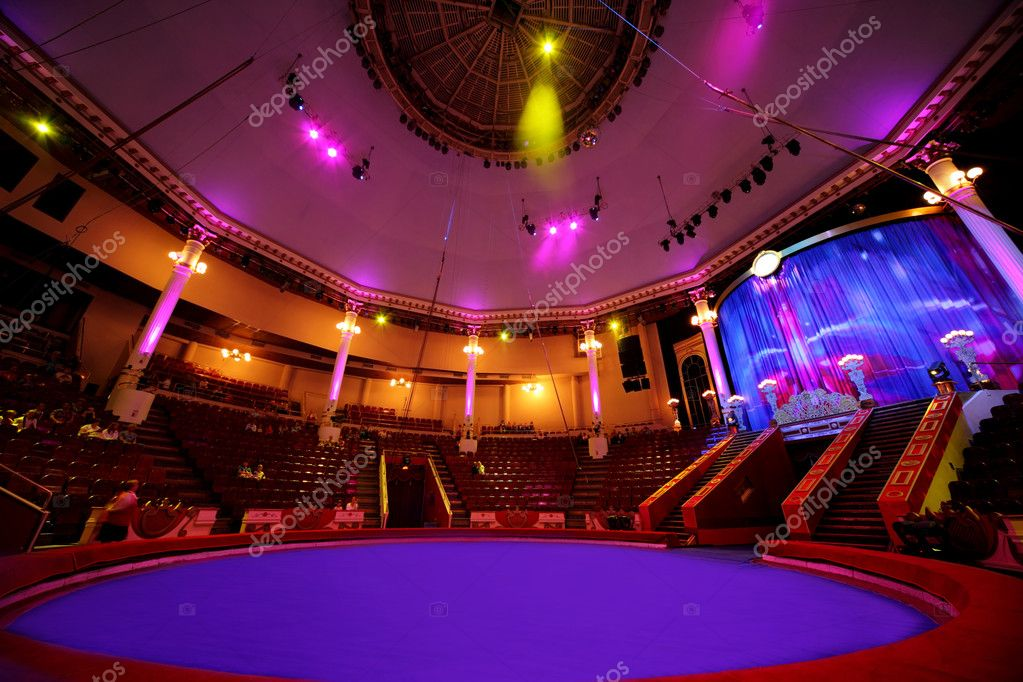 Circle arena in circus purple light lamps general view on cellin