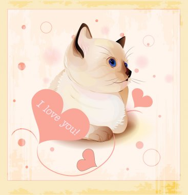 Valentines day greeting card with little siamese kitten and hear