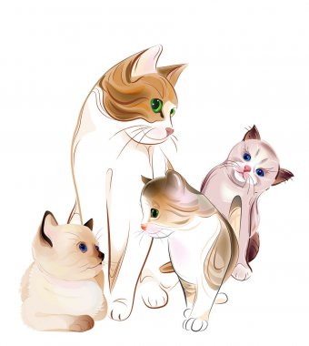 Happy cats family. Cat and kittens