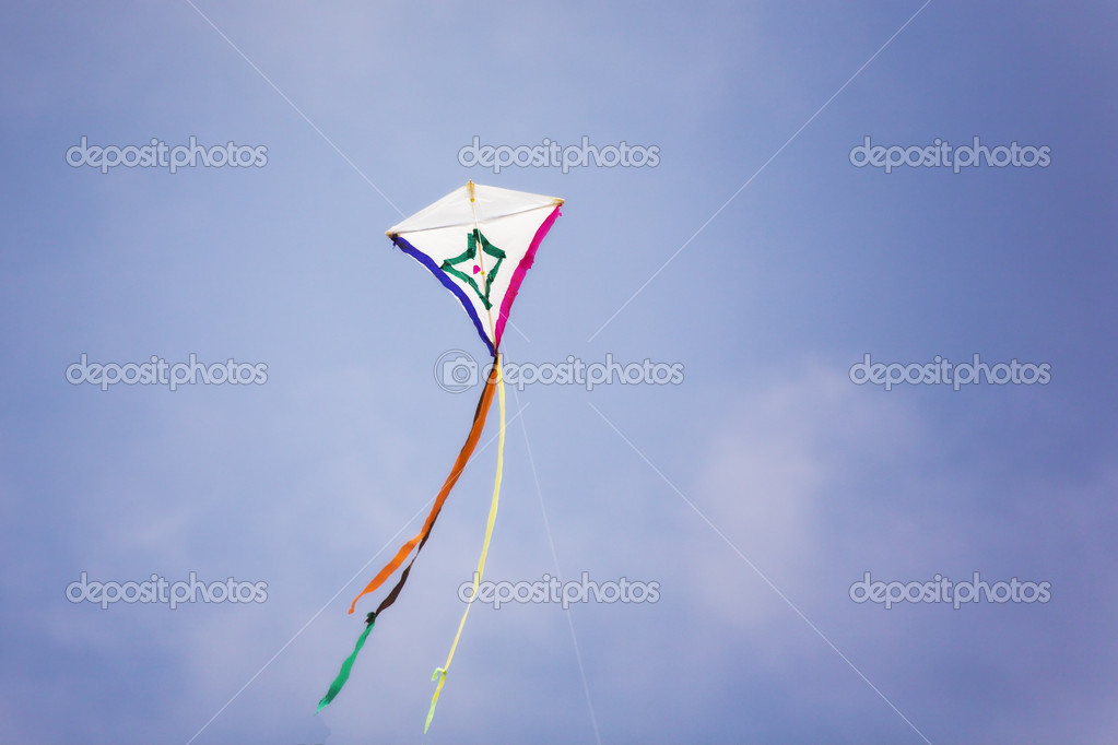 Kite on sea beach