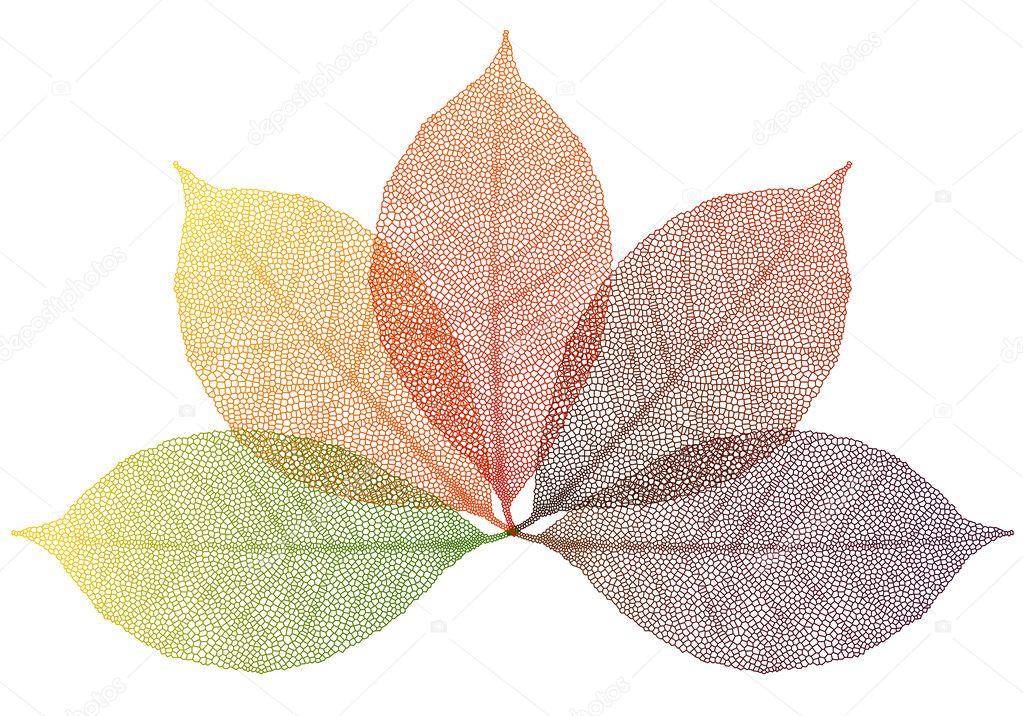 Hojas de oto o vector vector de stock beaubelle 7239614 - Descargar autumn leaves ...